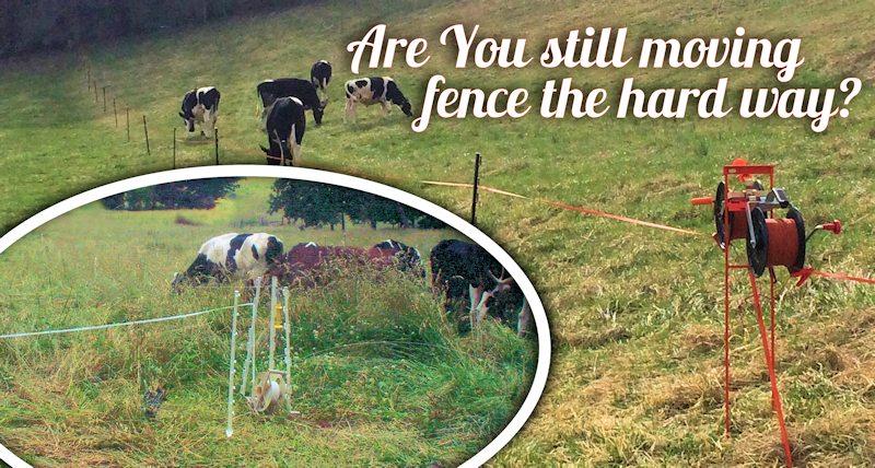 managing rotational grazing